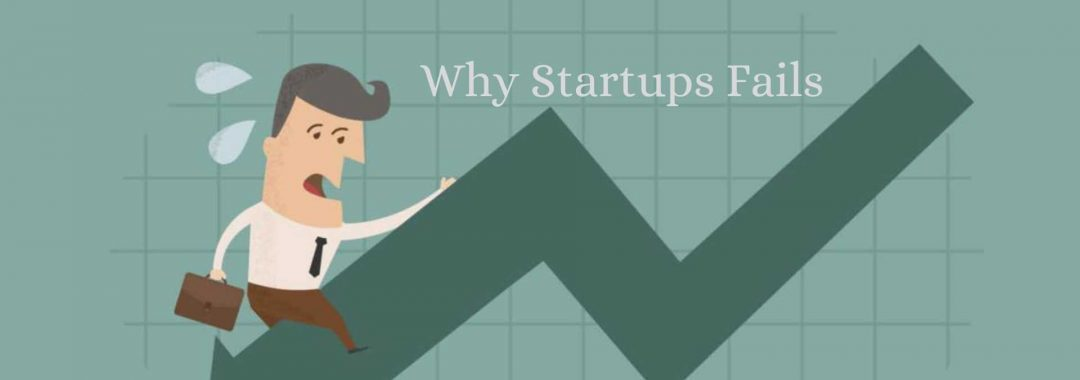 Why Startups Fails